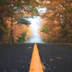 changer, acceptation, impermanence, transmutation, abandonner habitudes, se renouveler, agir, automne, mathilde vermer, chroniques